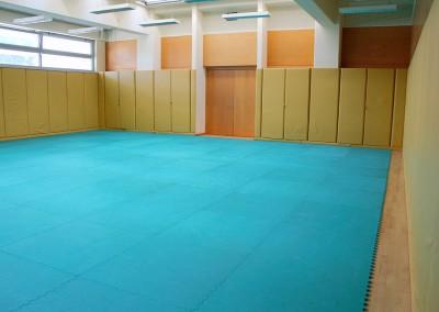 Dvorana za borilne veščine 2